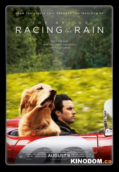 Невероятный мир глазами Энцо / The Art of Racing in the Rain 2019 BDRip